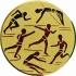 Эмблема для медалей самоклеющаяся Многоборье.