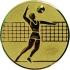 Эмблема для медалей самоклеющаяся Волейбол (м).
