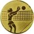 Эмблема для медалей самоклеющаяся Волейбол (ж).