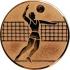 Эмблема для медалей алюминиевая А6 Волейбол.